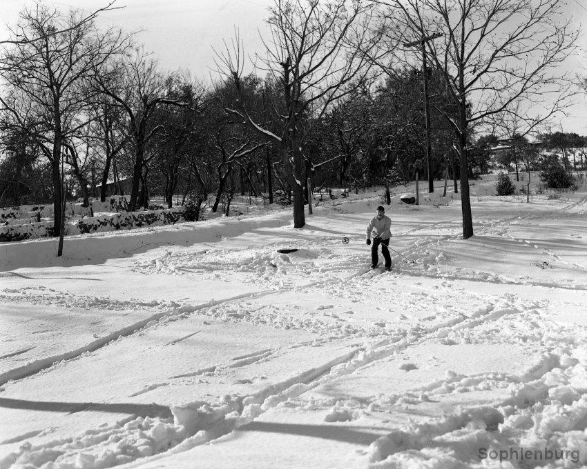 E.O. Krause skiing down Klappenbach Hill (Fredericksburg Road at Landa Park), 1949. (S491-100)